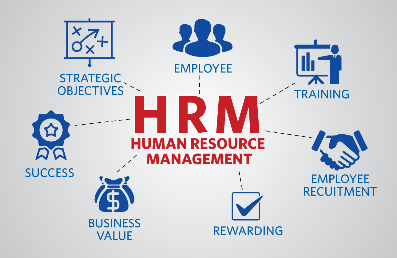 Cloud Based Hris And Computer Based Hr Software E